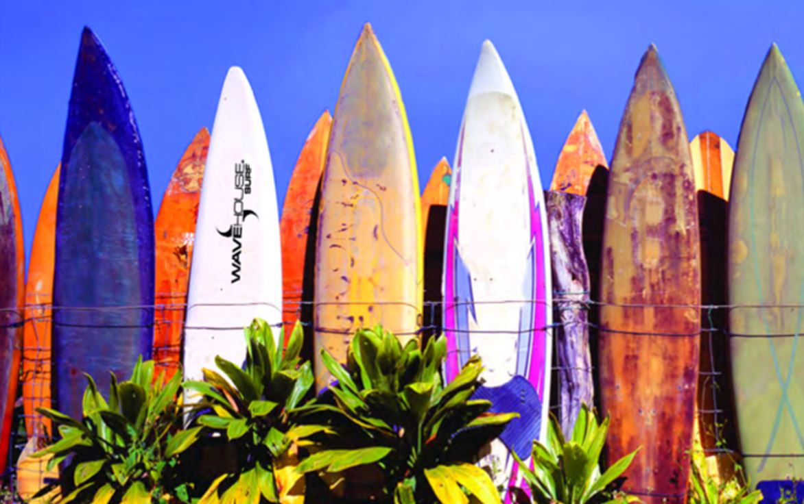 wave-house-surfboards